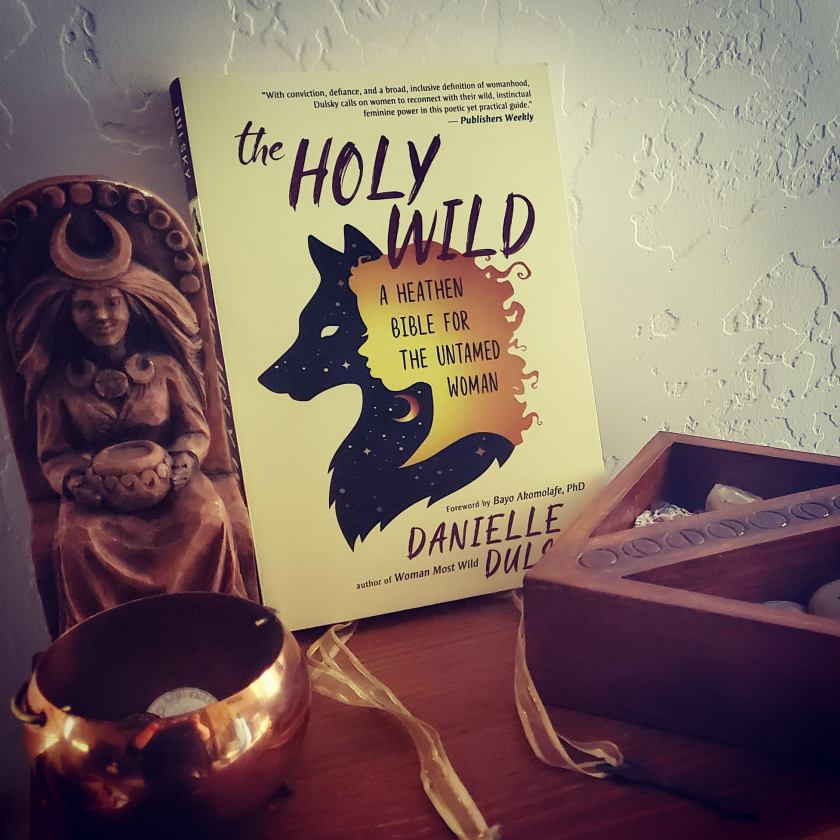The Holy Wild by Dulsky